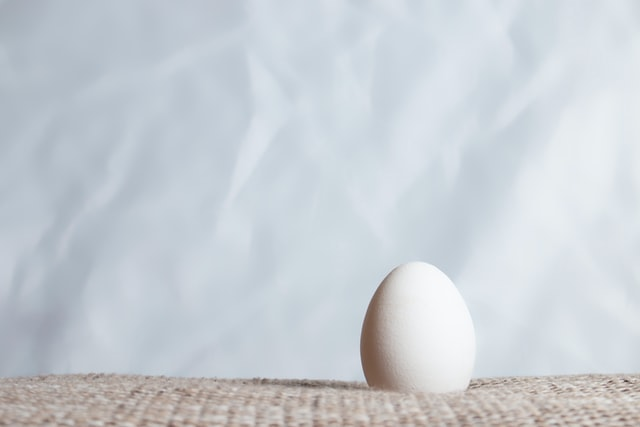 Single white egg