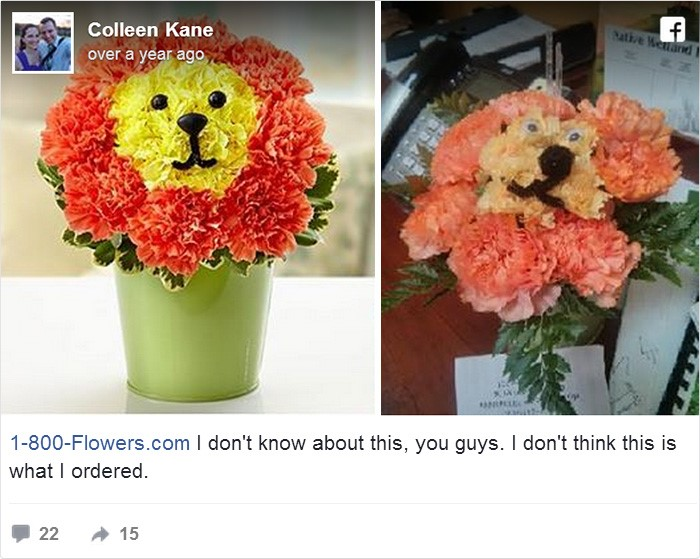 online shopping, funny, flower, cyclone, gift, lion