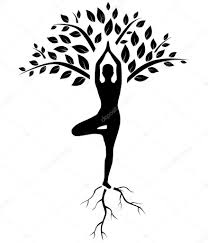 yogasan yoga