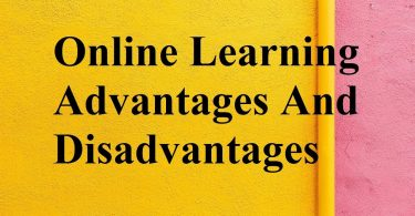 Advantages and disadvantages of online education: the main benefits of online learning