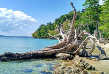 Andaman-and-Nicobar-Islands-scaled